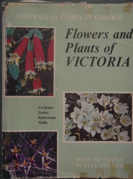 flowers and plants of victoria